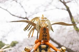 青木神社の桜と宮神輿