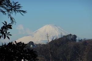 青木神社境内から望む雪の富士山
