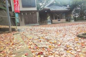 青木神社の秋2