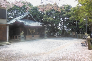 青木神社の春3